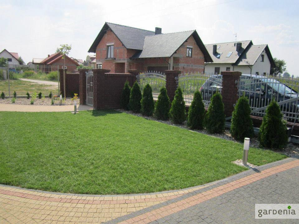 trawnik przed domem