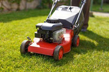 Pielęgnacja trawników
