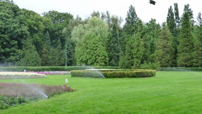 tereny zielone